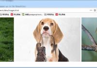根据文件夹下的图片生成网页
