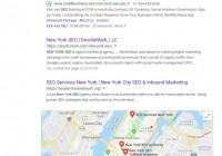 "Google SEO ""New York SEO""案例"
